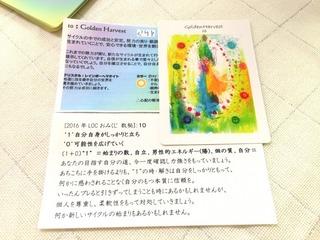 S__5054506.jpg