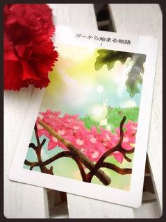 S__14467077.jpg